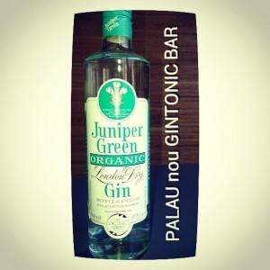 """JUNIPER GREEN ORGANIC"" PALAU nou GINTONIC BAR"