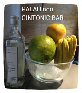 """JENSEN DRY GIN"" PALAU nou GINTONIC BAR"
