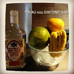 """""""WAN GULD DRY GIN"""" PALAU nou GINTONIC BAR"""