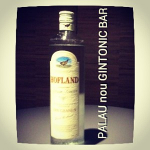 """HOFLAND GIN"" PALAU nou GINTONIC BAR"