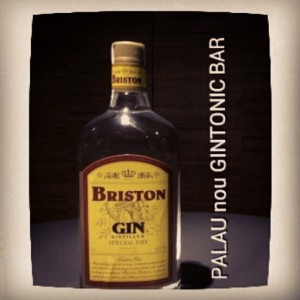 """BRISTON GIN"" PALAU nou GINTONIC BAR"