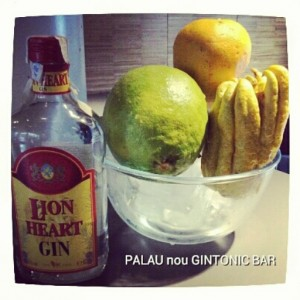 """LION HEART GIN"" PALAU nou GINTONIC BAR"